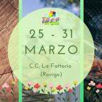 esposizione Fattoria_primavera